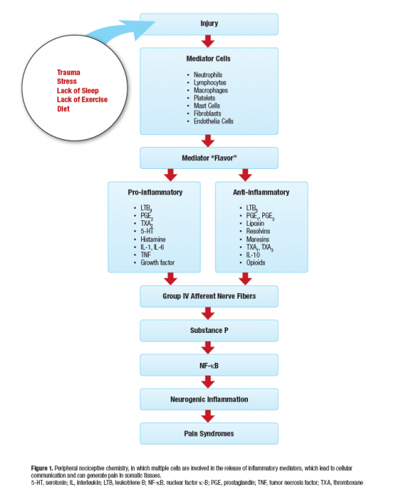 inflammation mediators